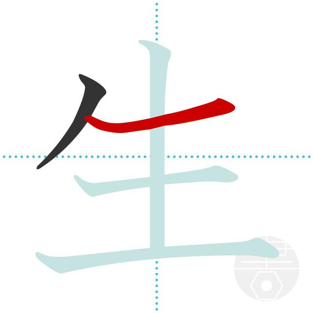 生」の書き順(画数) 正しい漢字の書き方【かくなび】