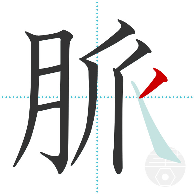 「脈」正しい漢字の書き方・書き順・画数